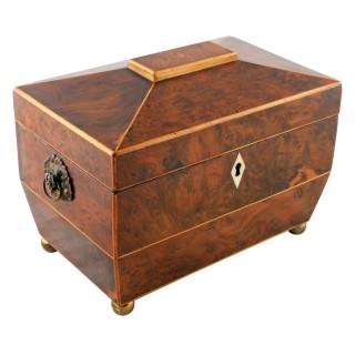 Regency Yew Wood Tea Caddy