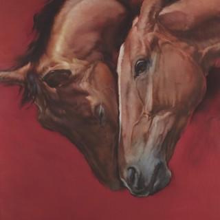 Equus V