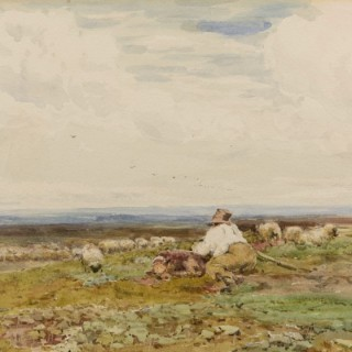 Shepherd and his dog minding sheep