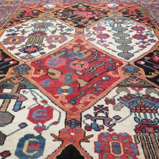 Attractive Baktiar rug