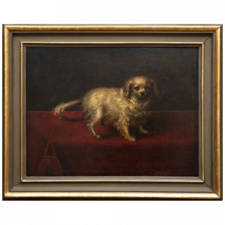 PAINTING OF A SMALL WHITE DOG WITH PEARL EARRINGS 17th century