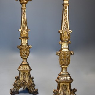 Pair of large 18th century Italian Rococo carved wood gilt & silver gilt pricket candlesticks