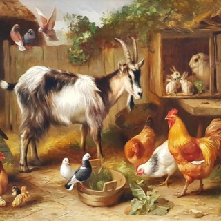 A Farmyard Gathering