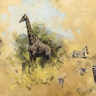 Studies of Zebra and Giraffe