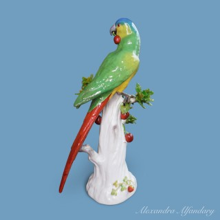 A Colourful 19th Century Meissen Parrot with Cherries after a Model by J. Kaendler