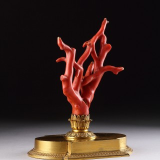 French 'Cabinet du Curiosities' Fine Gilded Ormolu Mounted Sicilian Red Coral Branch