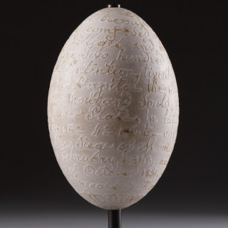Unusual and Curious South American Uruguayan Rhea Egg Carved with the Legend.....