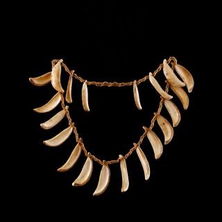Rare Pacific Solomon Islands Conus Shell Warrior's Necklace Strung on Coir Cord