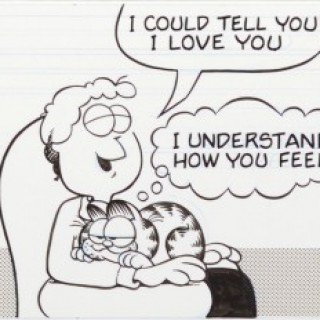 Everyone Loves Garfield, Especially Himself