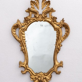 4 Tuscan gilt wood mirrors