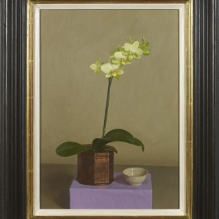 Green Orchid by Sian Hopkinson