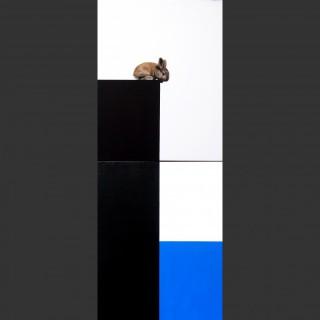 Blue Sea Bunny