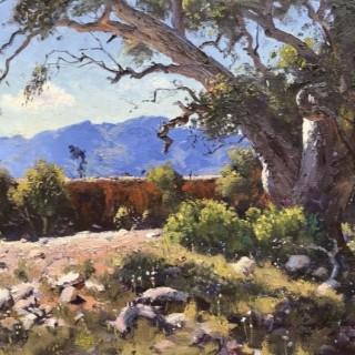 'Mary Creek, Flinders Ranges' by Warwick Fuller (born 1948)