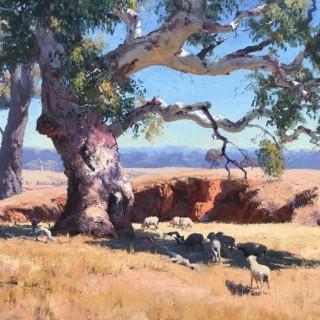 'In the Midday Sun, Mumbil' by Warwick Fuller (born 1948)