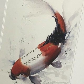 Watercolour of a Japanese Koi