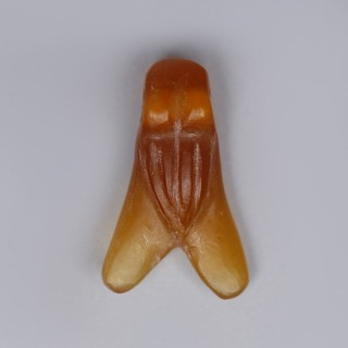 Ancient Egyptian Carnelian Fly Amulet