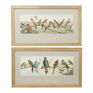 Pair of Cricket Prints, Harry Bright, an English Team & an Australian Eleven