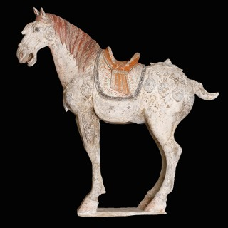 Tang Dynasty Polychromatic Horse