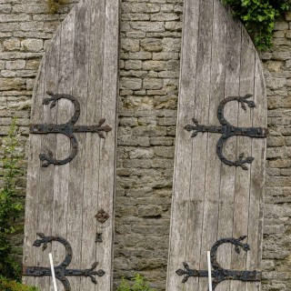 Pair of Mid-19th Century Oak Arched Doors