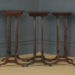 Antique English Set of Three Georgian Regency Rosewood & Mahogany Trio Nest of Side / Lamp / Coffee Tables (Circa 1820)