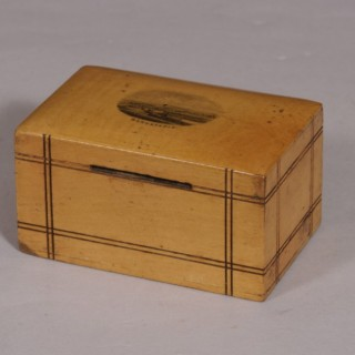 Antique Treen Early 20th Century Sycamore Money Box