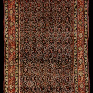 Exquisite Persian Senna Rug