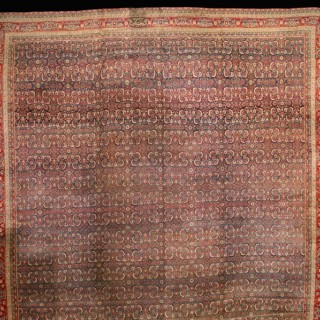Exceptional Indian Agra Carpet