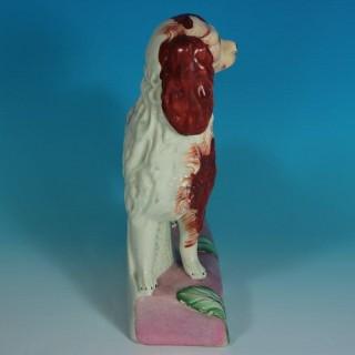 Staffordshire Pottery King Charles Spaniel Figure