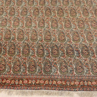 Senna (  Senneh )  Rug with a exquisite  Boteh Design