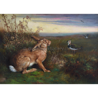 Hare & Lapwings In A Landscape