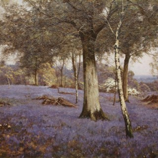 'Bluebell Wood nr. Fittleworth'