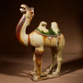 An original Beautiful Sancai glazed Tang camel,