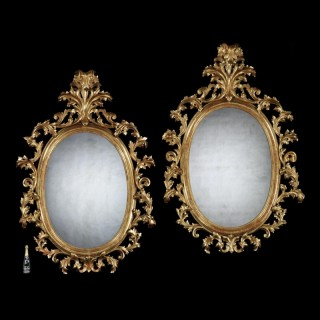 Grand Scale Pair Of 19th Century Oval Florentine Carved Gilt Wood Mirrors (7.5Ft In Height)