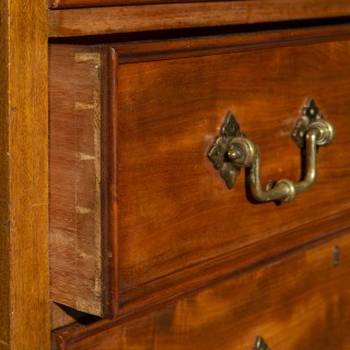 Superb William IV Tall Chest of Drawers