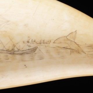 Rare and Unusual Pair of Matched Sailors Scrimshaw Sperm Whale Teeth