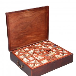 English Georgian Mahogany Collectors Table Box the Rising Lid Inlaid with a Conch Shell the Trayed Interior Containing Numerous Examples of Seashells
