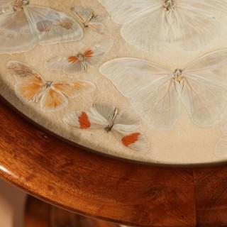A Brazilian Butterfly Table, Circa 1900-20