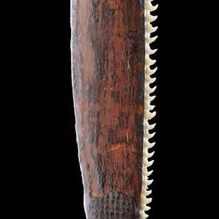 Unusual Western Australian Aboriginal Minang Peoples Saw Knife 'Taap'
