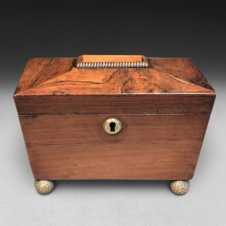 Regency Rosewood Tea Caddy of Sarcophagus Form