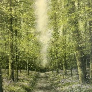 Magic Bluebell Path