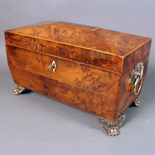 A REGENCY BURR YEW-WOOD TEA CADDY