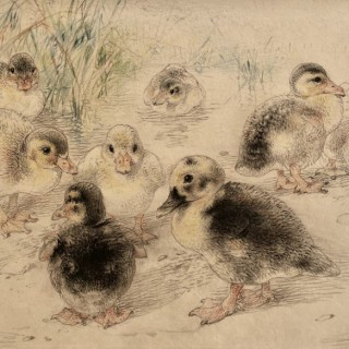 William Huggins - Ducklings