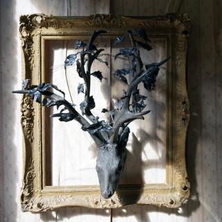 Beth Carter; Deer Head; Bronze Resin & Lead; 2011; Unique