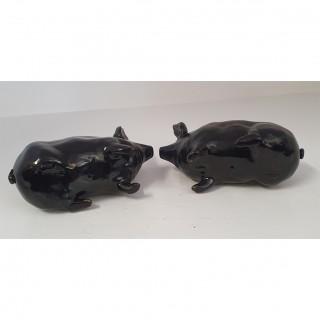 Rare Pair of Scottish Wemyss Black Pigs