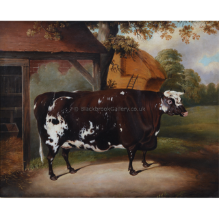 Portrait of a Cow in front of a Byre and Haystack