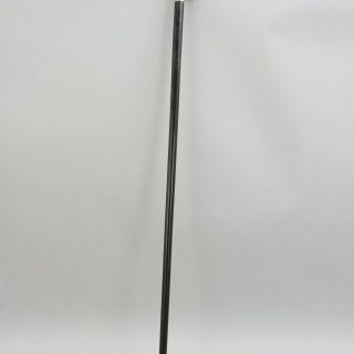 Antique Walking Stick, Carved Ivory Dod Head Handke.