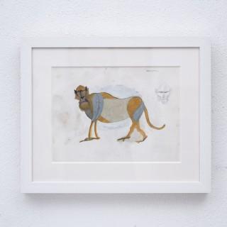 Standing macaque gouache by Henri Samouilov