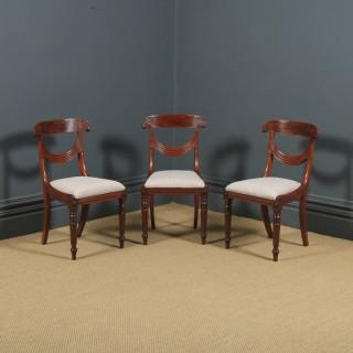 Antique English Georgian Regency Set of Three 3 Mahogany Trafalgar Dining Chairs (Circa 1820)