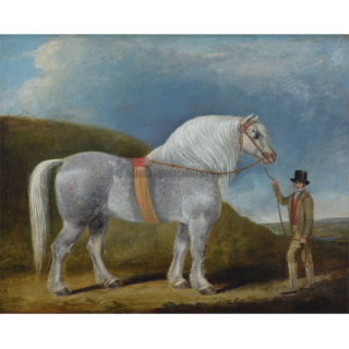 Prize Winning Stallion with His Proud Owner