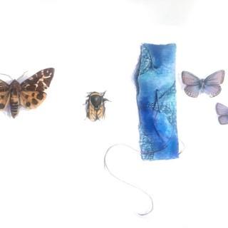 'Stitch' by Sarah Jane Bellwood (born 1967)